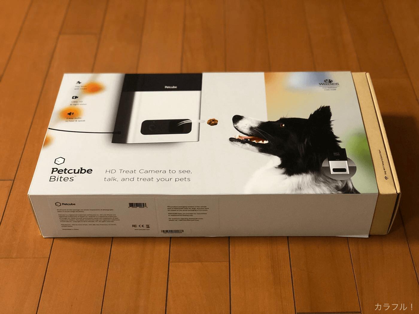外出先からペットの様子が見守れるウェブカメラ「Petcube(ペットキューブ)」があれば安心【PR】